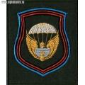 Шеврон 106 ВДД приказ 300