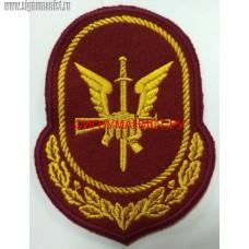 Нарукавный знак военнослужащих и сотрудников ГУ ССН Росгвардии