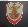 Нарукавный знак сотрудников ГФС России для парадной формы серого цвета